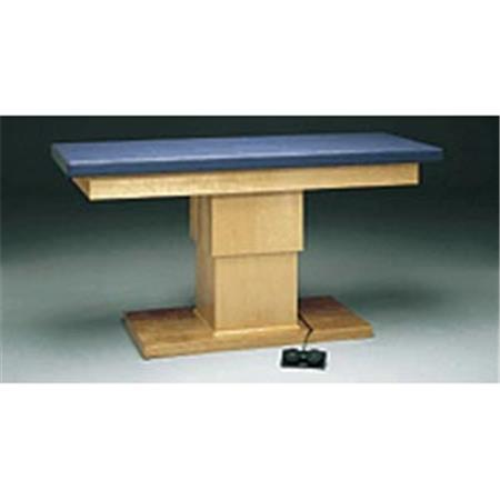 Professional Hi-Low Treatment Table