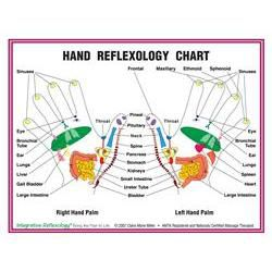 "8.5"" X 11"" Foot And Hand Charts Set"