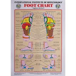 Int. Institute Of Reflexology Foot Chart 23 X 30'