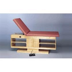 Professional Hi-Low Treatment Table W/ Adj Backres