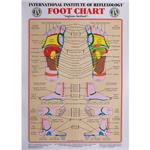 Int. Institute Of Reflexology Foot Chart 23 X 30""