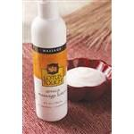 Lotus Touch Arnica Massage Lotion