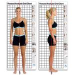 Postural Analysis Grid Chart- Original 3' X 7'