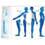 Free Dermatome Poster With Box Of Cleanwheel
