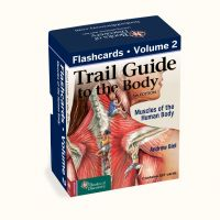 Trail Guide to the Body Flashcards 6th Edition - Human Body Muscles